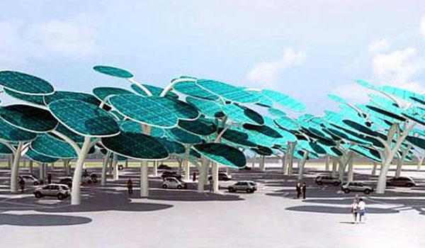 Floresta Solar