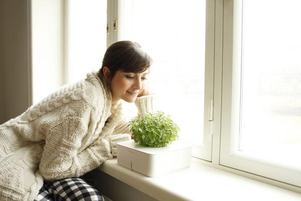 blog_plants_nainev1