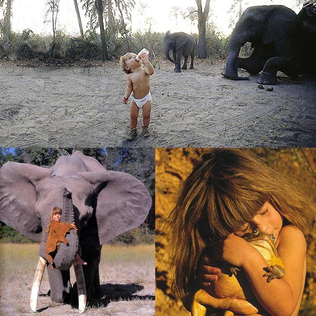 tippi- e-sapo--elefante-abu-amigos-de-infancia-na-selva-africana