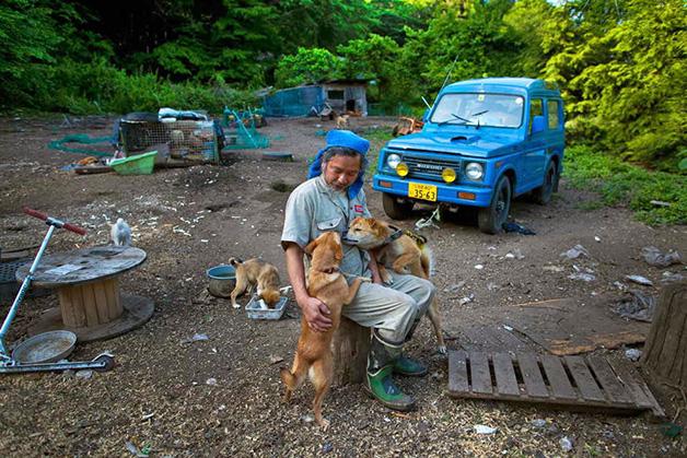 gatos-coelhos-aves-e-caes-condenados-sao-cuidados-pelo-ultimo-morador-de-fukushima-blog-usenatureza