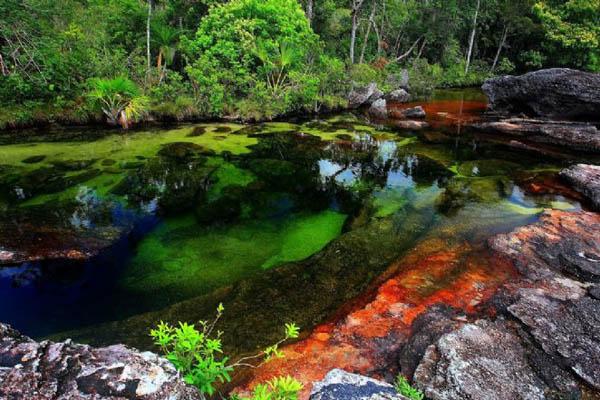 conheca-o-rio-mais-bonito-do-mundo-colombia-blog-usenatureza