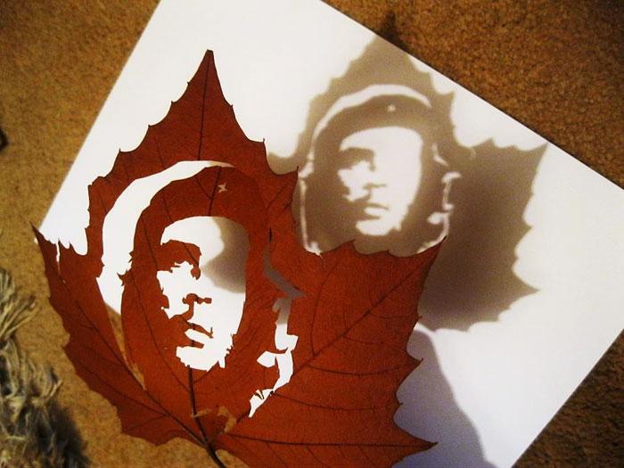 leaf-cutting-omid-asadi-9