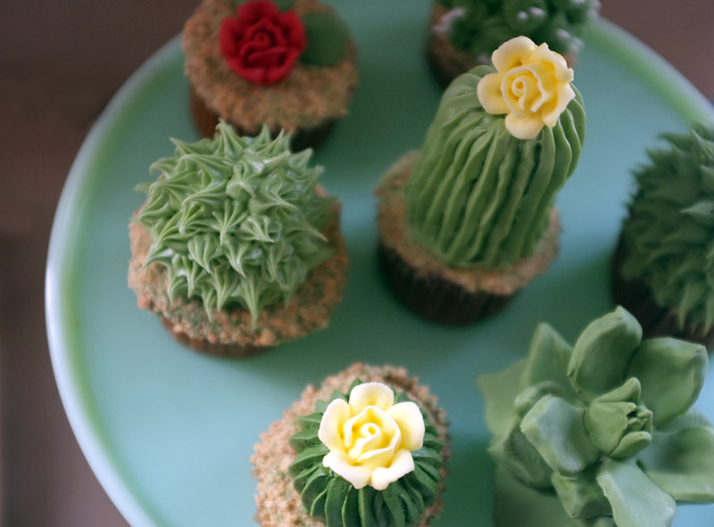 cupcakes-com-formatos-de-mini-cactos-alana-jones-blog-usenatureza