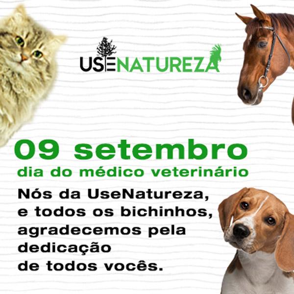 veterinarioBlog