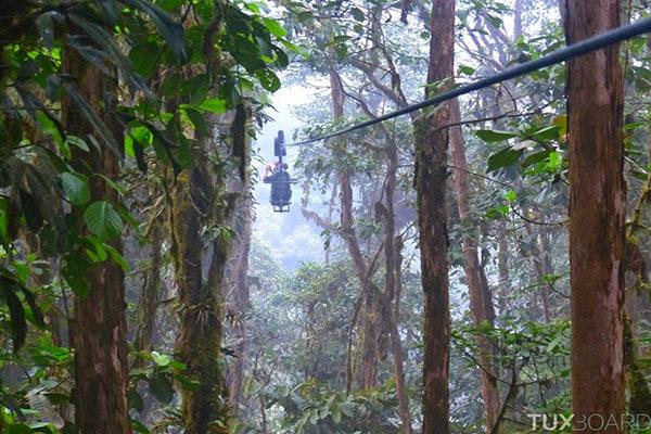 pedalando-pelas-arvores-equador-blog-usenatureza