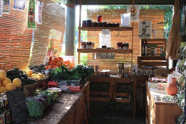 familia-produz-toneladas-alimentos-com-mini-horta-blog-usenatureza
