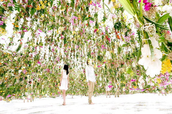jardins-de-flores-interagem-com-visitas-blog-usenatureza