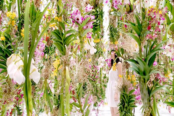 jardins-de-flores-interagem-com-visitas-em-toquio-blog-usenatureza