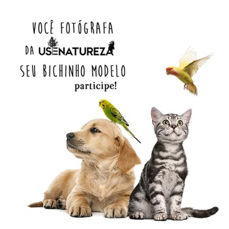 voce-fotografa-da-usenatureza-seu-bichinho-blog-usenatureza