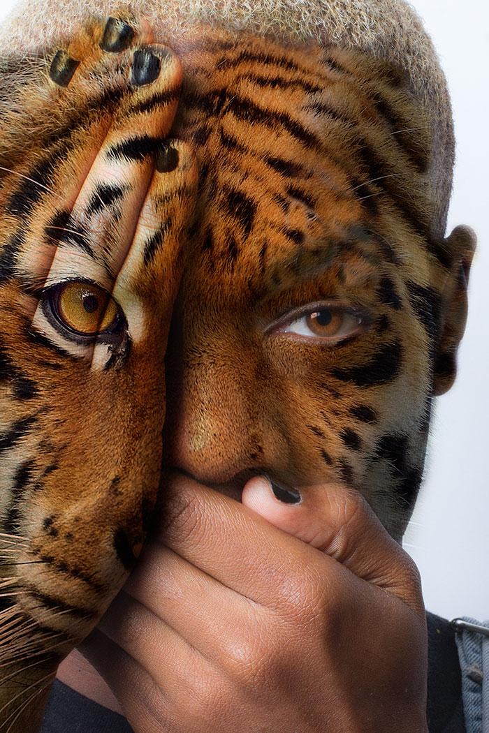 a-dor-e-tristeza-dos-animais-blog-usenatureza