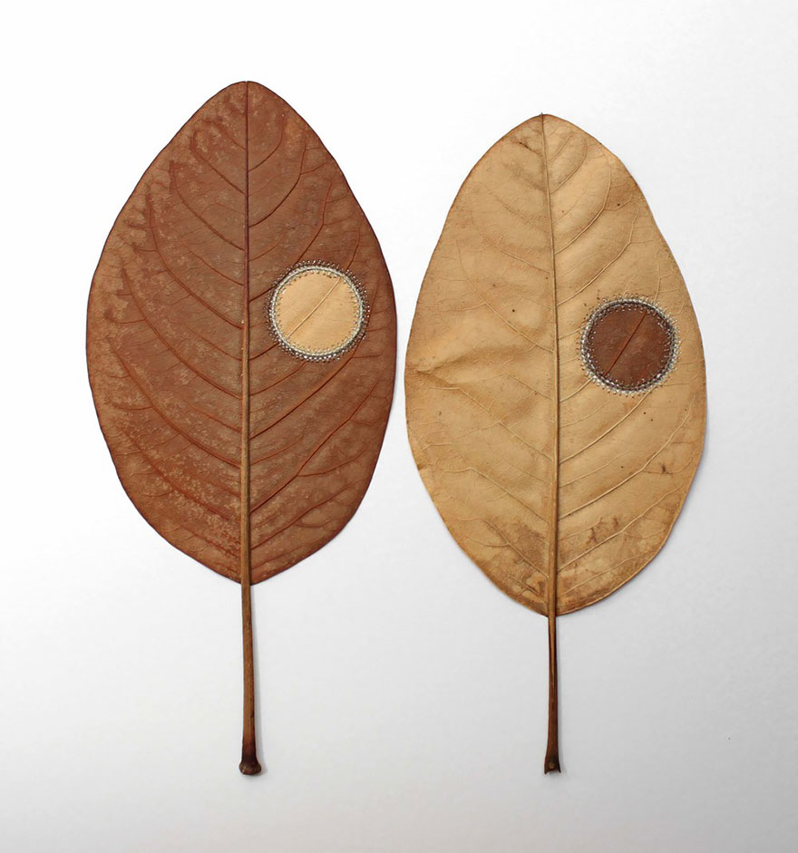 amor-a-natureza-se-transforma-em-delicadas-esculturas-folhas-blog-usenatureza