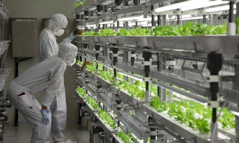 as-fazendas-tecnologicas-dentro-de-fabricas-antigas-blog-usenatureza