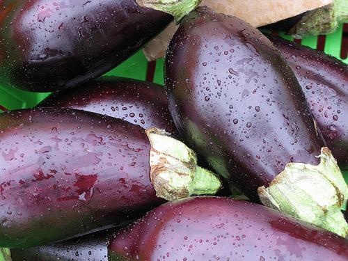 berinjela-vegetais-macios-e-nutritivos-blog-usenatureza