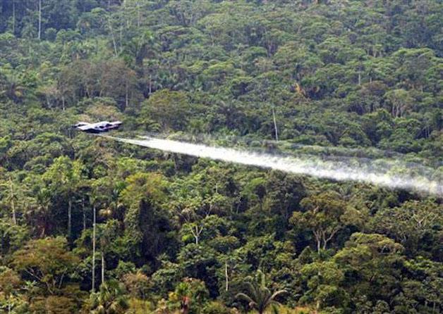 mariposas-contra-o-trafico-colombiano-cocaina-blog-usenatureza