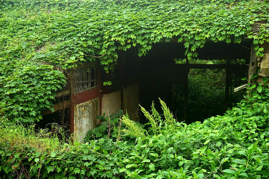 vila-chinesa-engolida-pela-natureza-blog-usenatureza