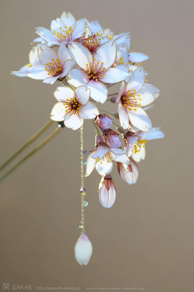 natureza-na-cabeca-japão-blog-usenatureza