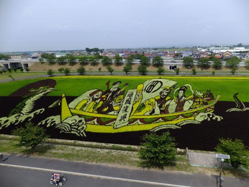plantacao-de-arroz-vira-obra-de-arte-no-japao-blog-usenatureza