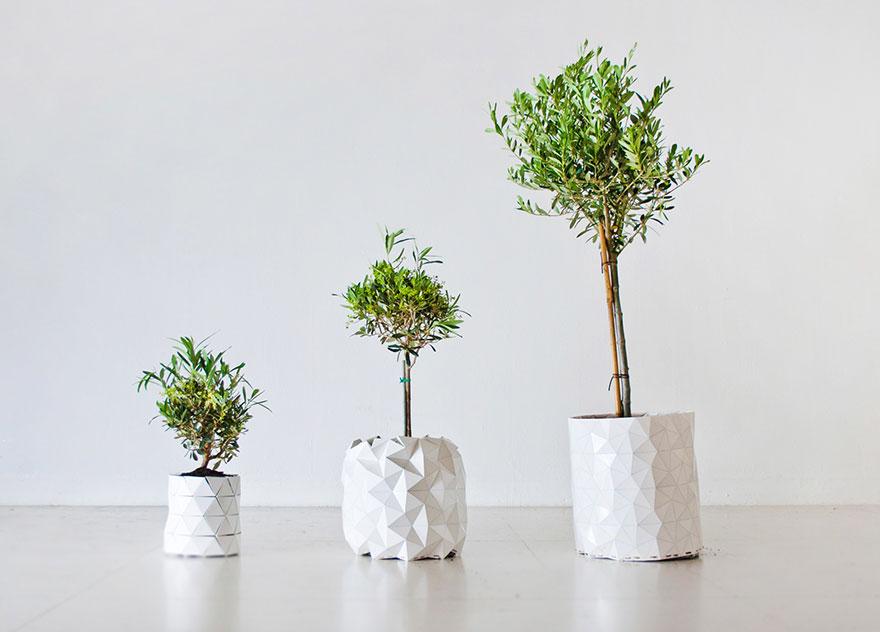 vasos-que-crescem-junto-com-as-plantas-blog-usenatureza