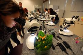 3-de-setembro-dia-do-biologo-laboratorio-blog-usenatureza