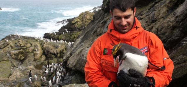 3-de-setembro-dia-do-biologo-pinguim-blog-usenatureza