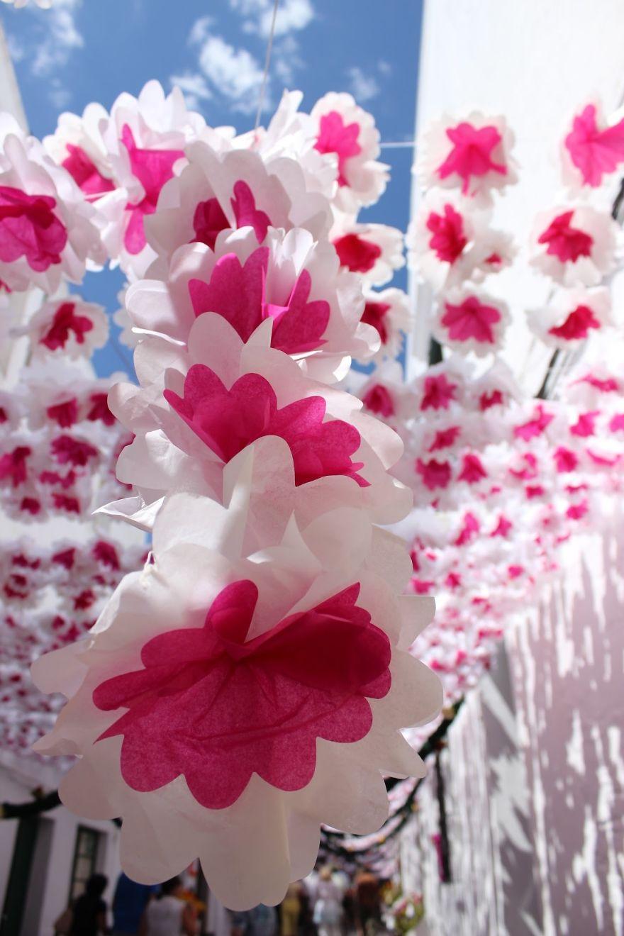 festival-das-flores-ha-150-anos-cobre-as-ruas-de-portugal-flores-blog-usenatureza