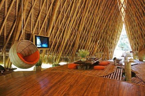 o-bambu-representa-o-buda-a-madeira-do-futuro-blog-usenatureza