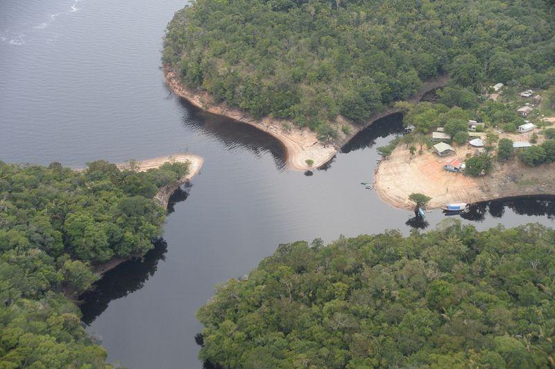 anavilhanas-ilha