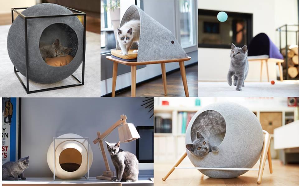 um-design-diferente-para-os-gatos-blog-usenatureza