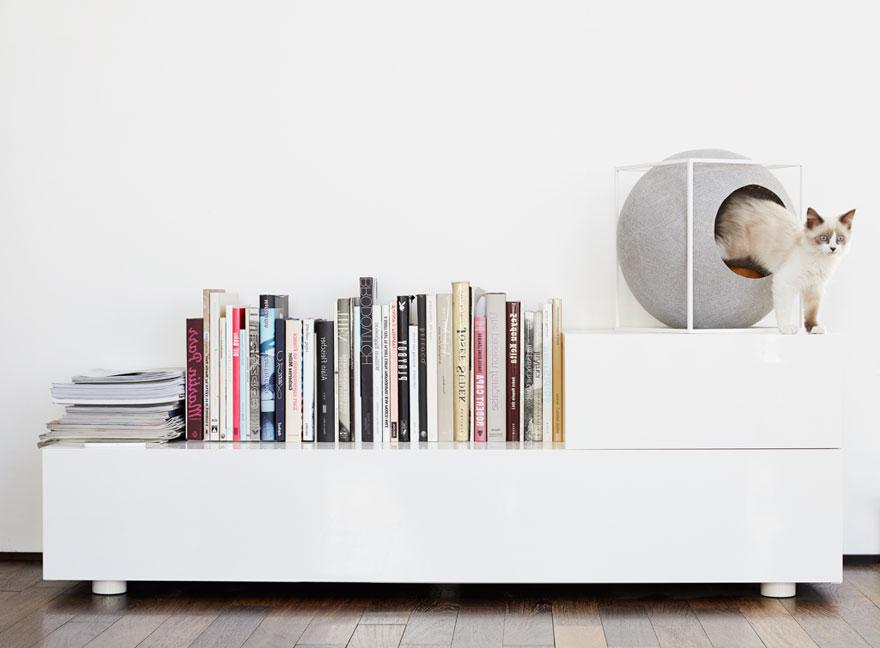 um-design-diferente-para-os-gatos-modeno-blog-usenatureza