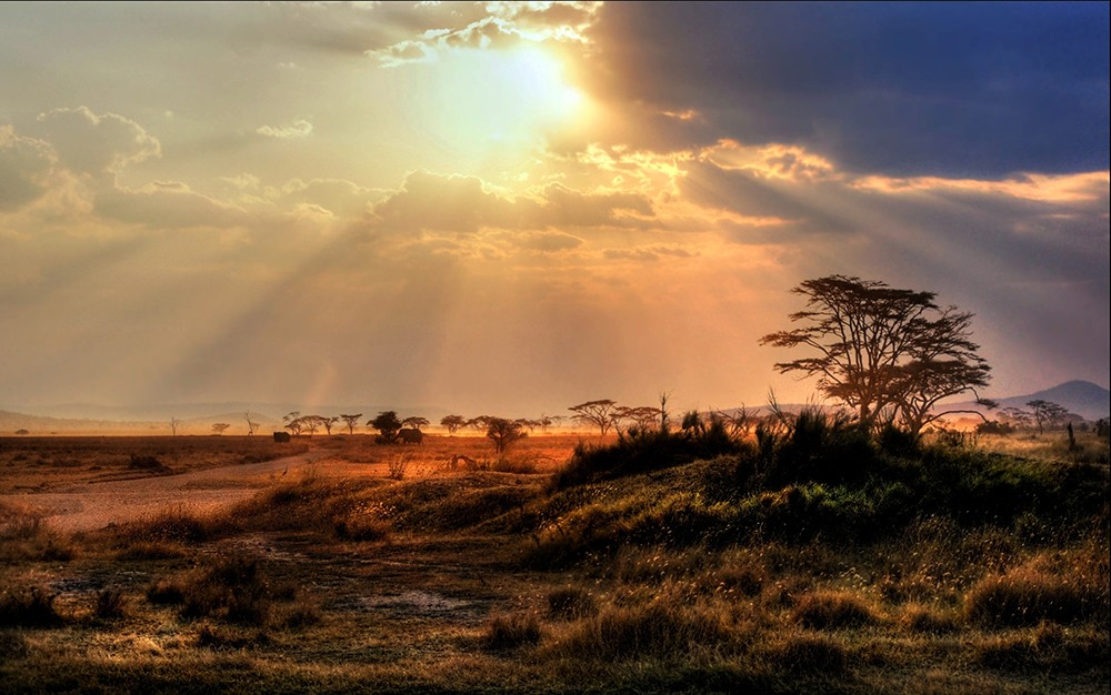 Serengeti-National-Park