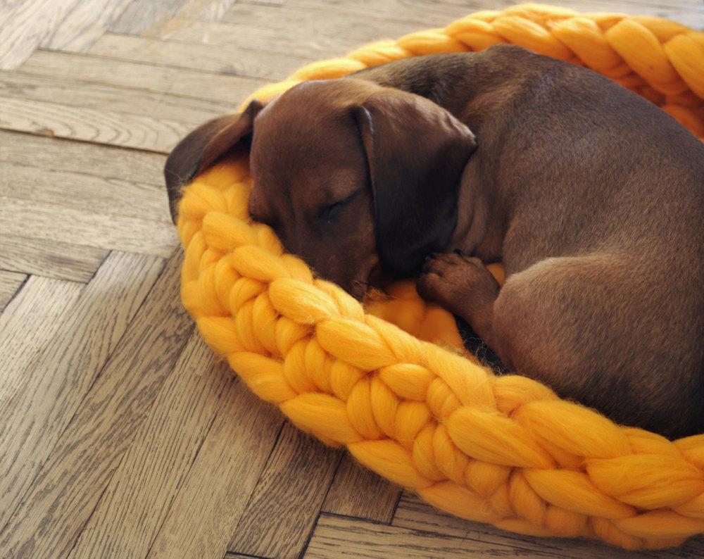 cama-cachorro-tricot-gigante-blog-usenatureza