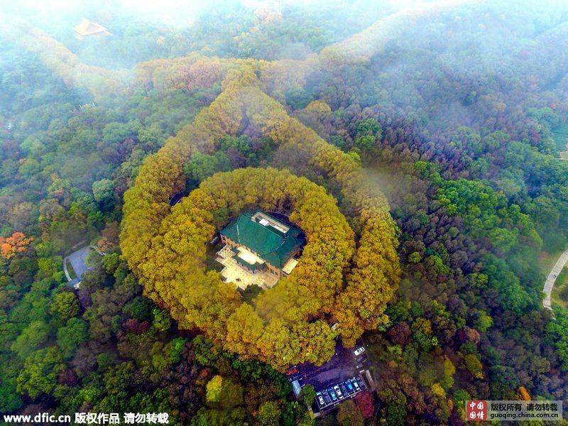 um-palacio-em-meio-a-natureza-mei-ling-blog-usenatureza