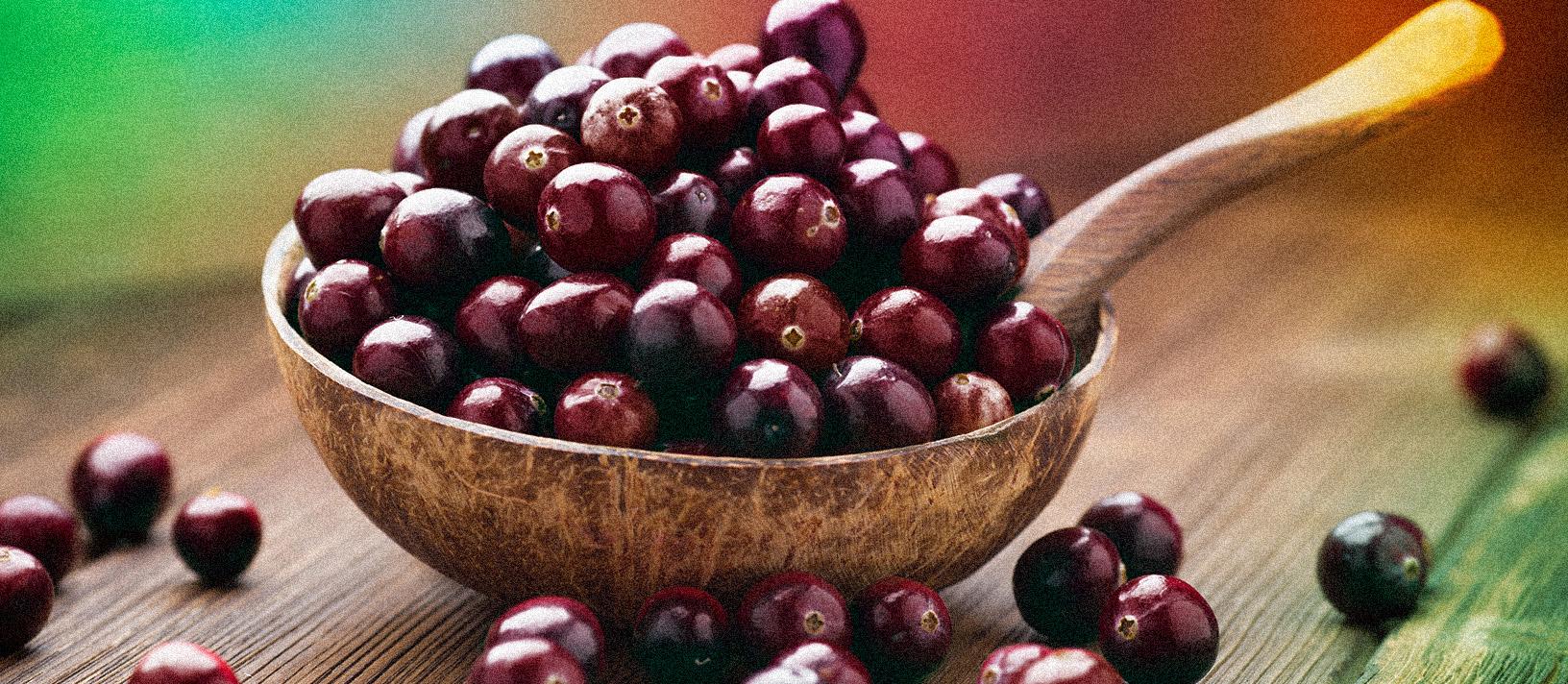 açai-e-seus-beneficios-fruta-blog-usenatureza