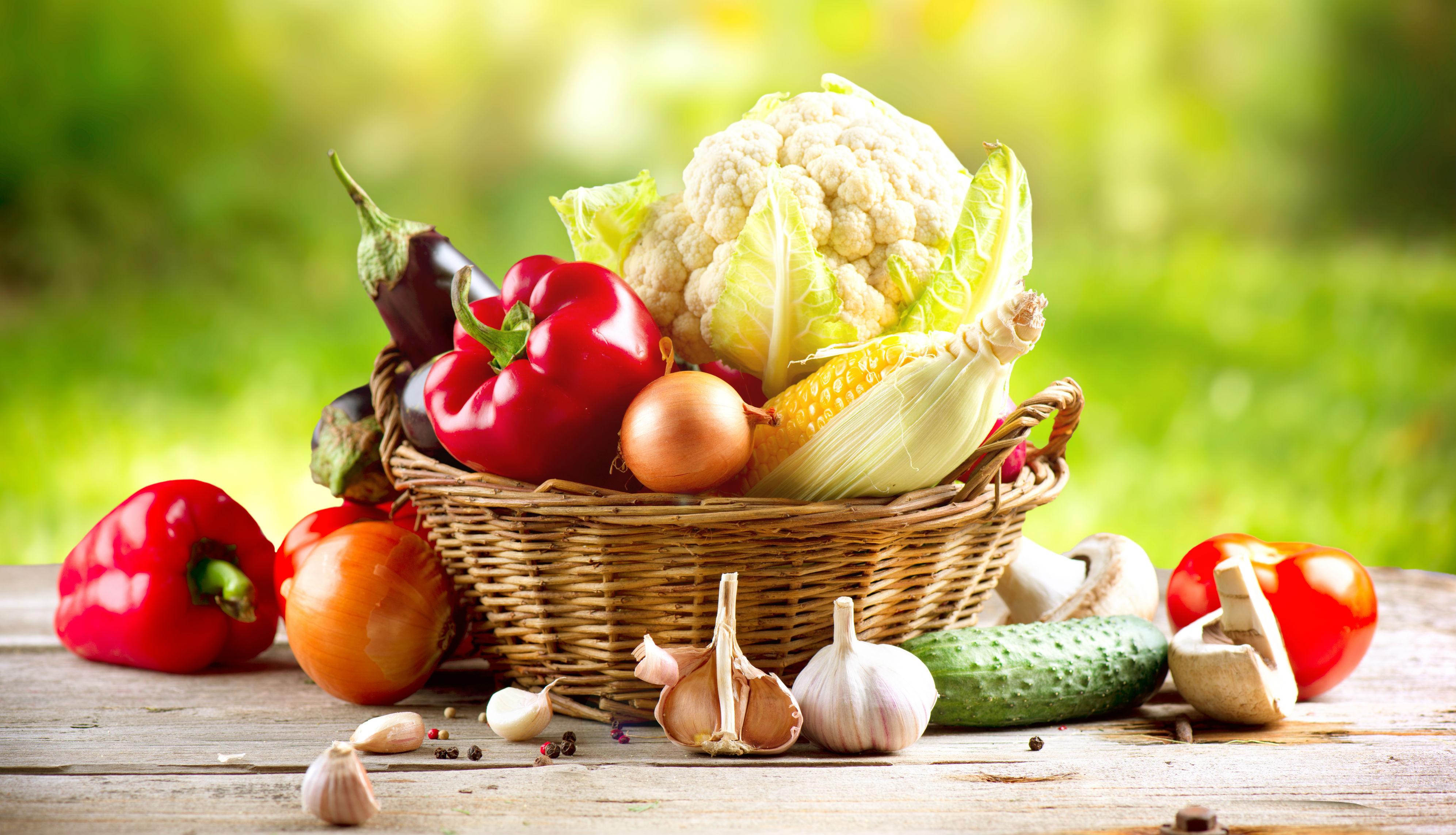 alimentos-bioativos-varios-blog-usenatureza