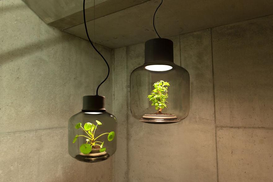 luminaria-autossustentavel-cultiva-plantas-sem-agua-ou-luz-blog-usenatureza