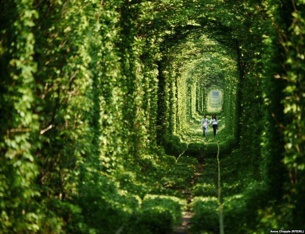 a-historia-do-tunel-do-amor-da-ucrania-klevan-blog-usenatureza