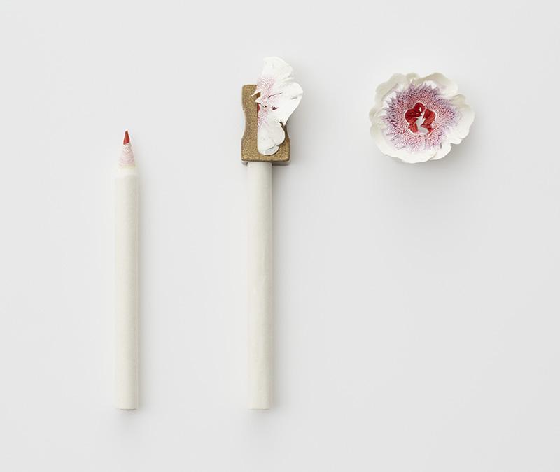 artista-transforma-papel-em-delicadas-flores-haruka-misawa-blog-usenatureza