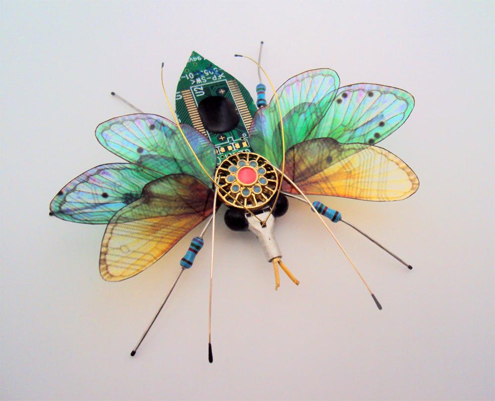 artista-trabalha-natureza-com-tecnologia-alice-blog-usenatureza