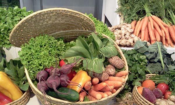 beneficios-dos-produtos-organicos-alimentaçao-saudavel-blog-usenatureza