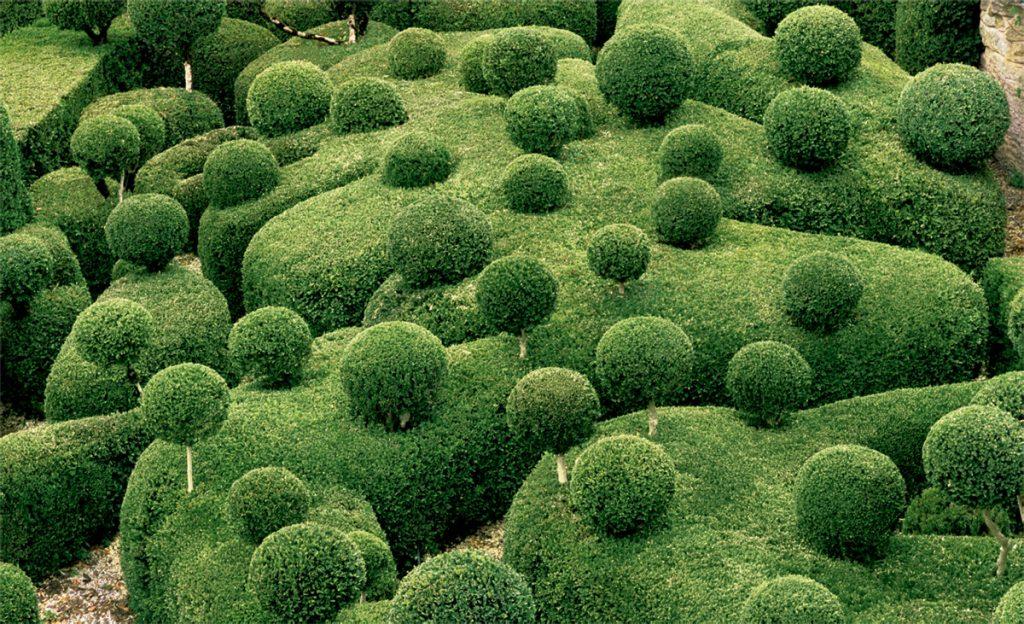 o-fantastico-jardim-esculpido-blog-usenatureza