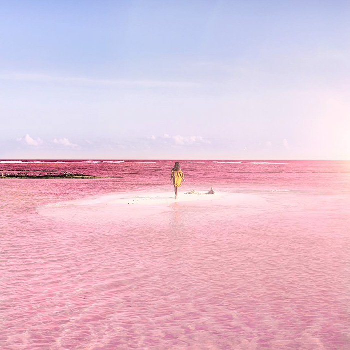 o-incrivel-lago-rosa-no-mexico-las-coloradas-blog-usenatureza
