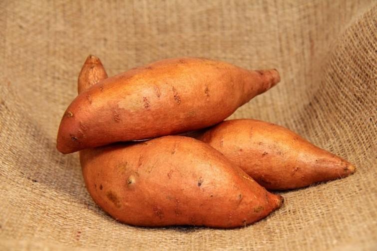 torradas-de-batata-doce-em-3-minutos-receita-facil-blog-usenatureza