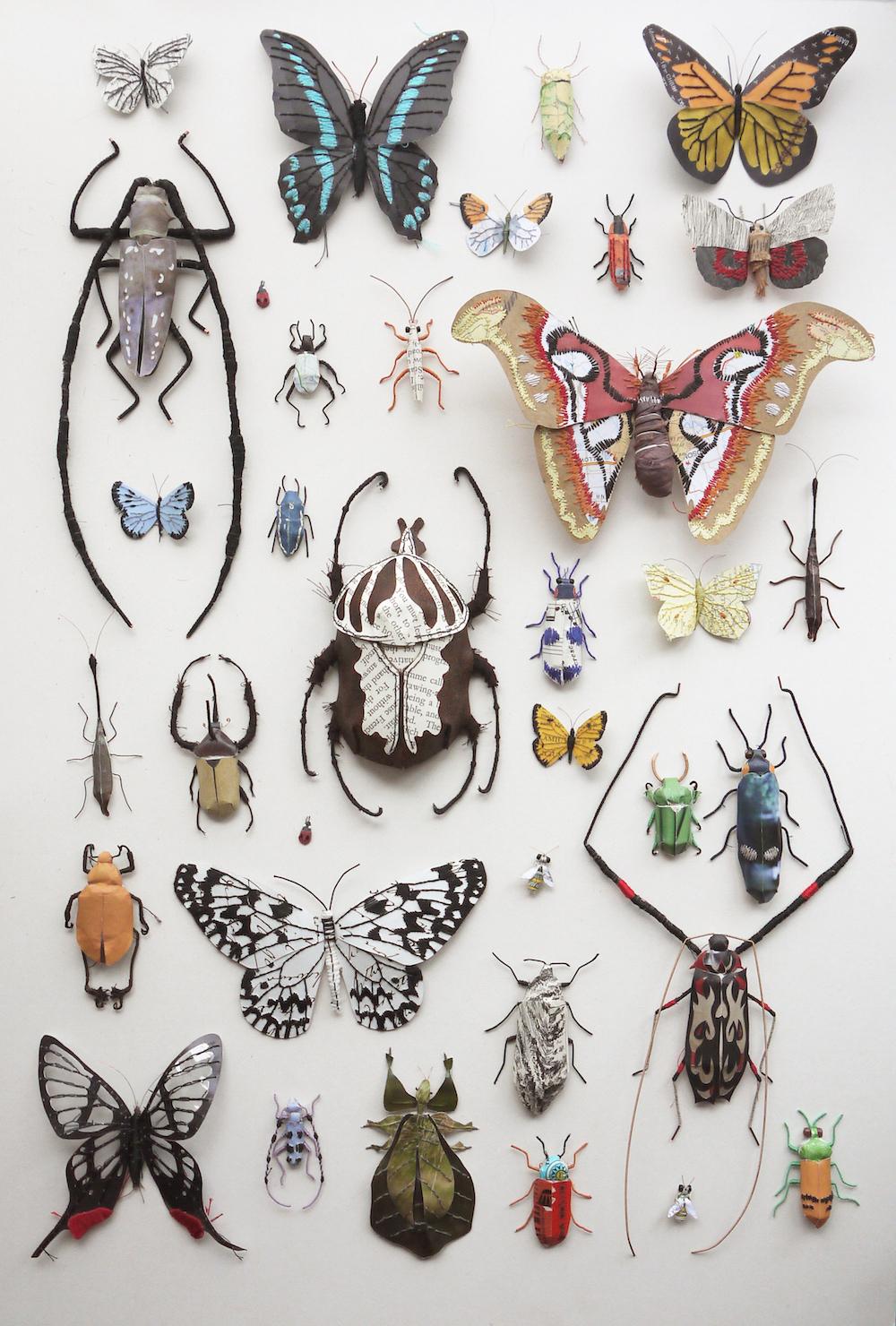artista-apaixonada-pela-natureza-blog-usenatureza