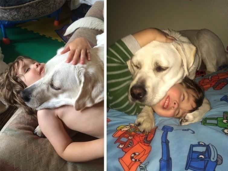 cachorro-proporciona-qualidade-de-vida-autismo-blog-usenatureza